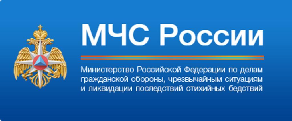 Министерство Российской Федерации по делам гражданской обороны, чрезвычайным ситуациям и ликвидации последствий стихийных бедствий